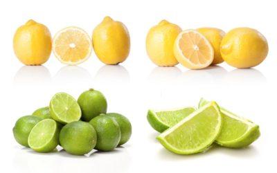 When life gives you lemons, you make lemonade.  When life gives you Lyme, you make … the best of it.