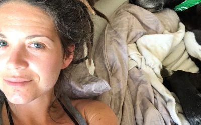 Four Months After Paracelsus: Lyme Disease Treatment Update